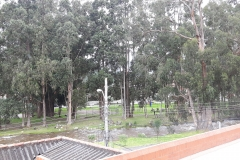 View of Yanuncay Linear Park from bedroom
