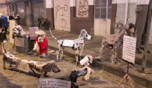 "Barrio El Vado: Art and Political Satire. Loja's mayor proposed ""disappearing"" all stray dogs."