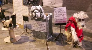 "Barrio El Vado: Art and Political Satire ""I am also a police dog except I am dressed as a native infiltrating"" and ""Tell me when the Loja mayor is gone please. Adopt me before mankind kills me."""